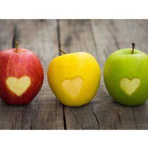 Healthy Nutrition Training